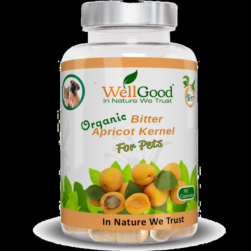 Organic Bitter Apricot Kernels Seed capsules   | Natural B17