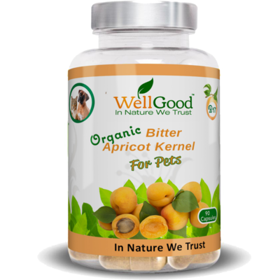 Organic Bitter Apricot Kernels Seed capsules   | Natural B17