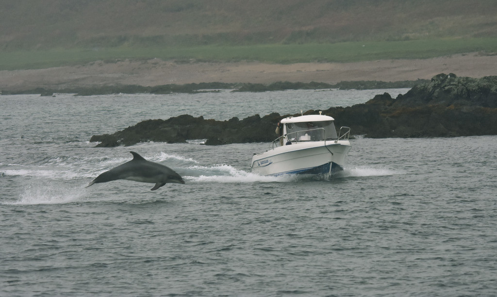 """""""THE WILD ATLANTIC WAY""""  South-West 5 Day Self - Drive Tours - FROM $900.00"""