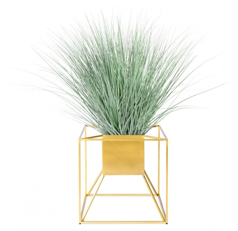 Potted Grass in Floating Planter