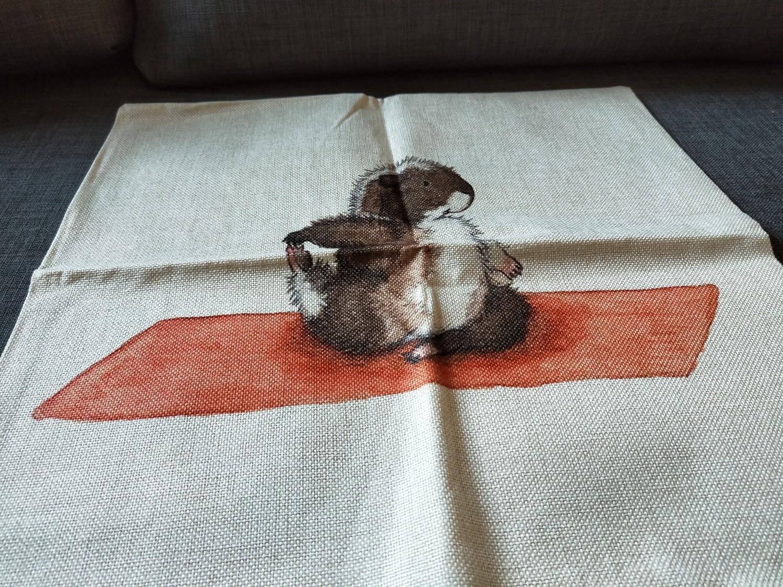 Guinea Pig Cushion  Cover 3