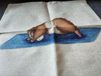 Guinea Pig Cushion  Cover 5