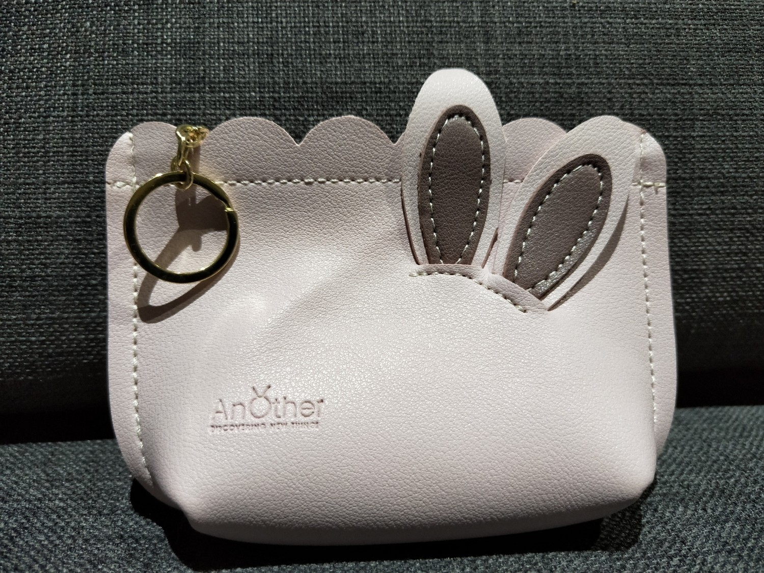Coin pouch 1