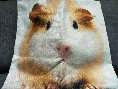 Guinea Pig Cushion  Cover 11