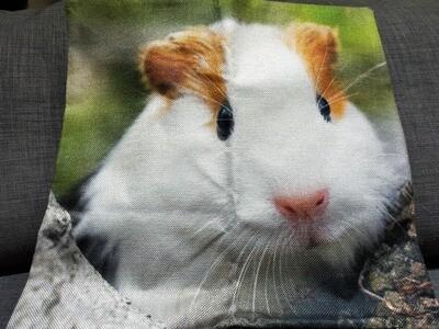 Guinea Pig Cushion  Cover 13