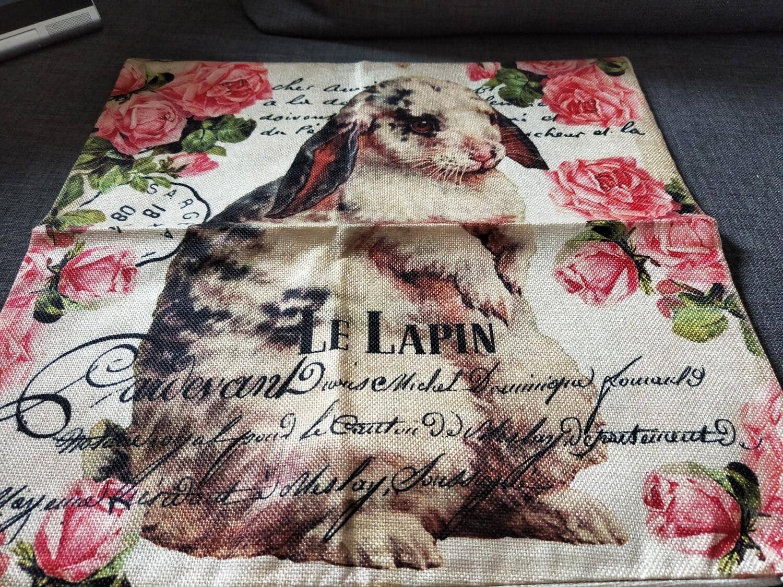 Bunny Cushion  Cover 13