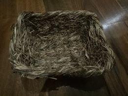 Trixie Grass tray