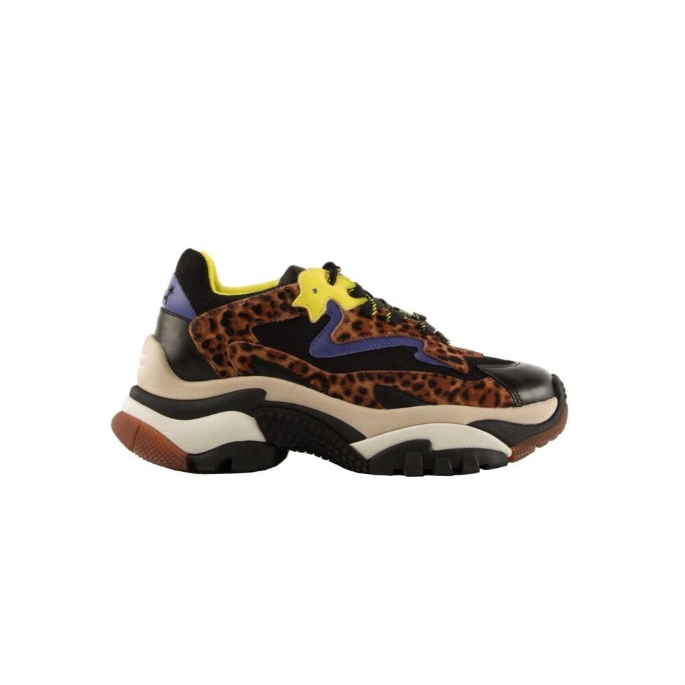 ASH - Addict sneakers - Black/Pony Leopard