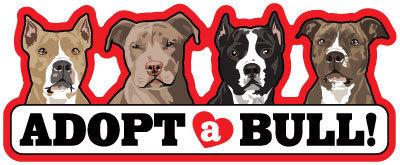 Adopt-A-Bull Bullies Magnet