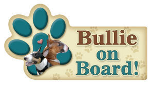 Bullie on Board Paw