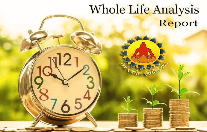 Whole Life Analysis : (In-depth Report) | Covering 5 Areas of Life | Written PDF Report