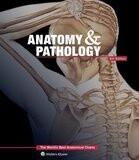 Anatomy & Pathology Anatomical Chart Textbook