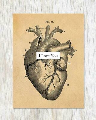 I Love You: Anatomical Heart Card