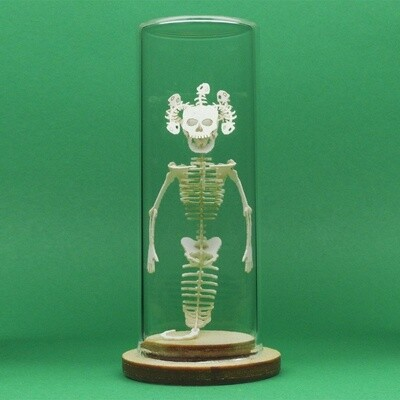 Tiny Medusa Skeleton Deluxe Mini 3D Kit