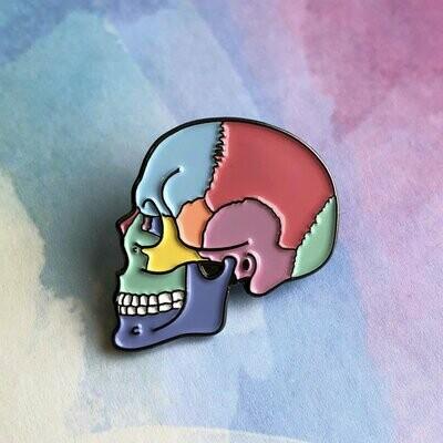 Textbook Anatomy Skull Pin
