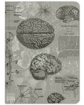 Gray Brain Notebook