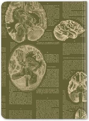 Green Brain Notebook