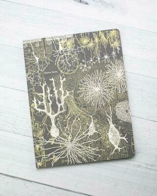 Neurons Notebook
