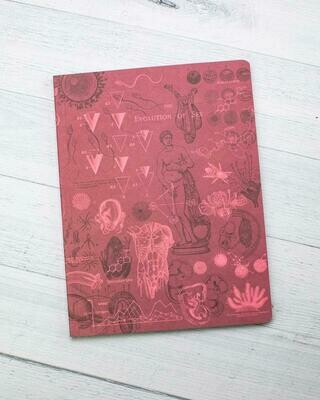 Reproduction Notebook
