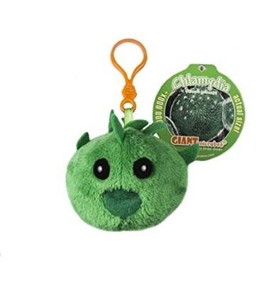 Chlamydia (Chlamydia Trachomatis) Keychain