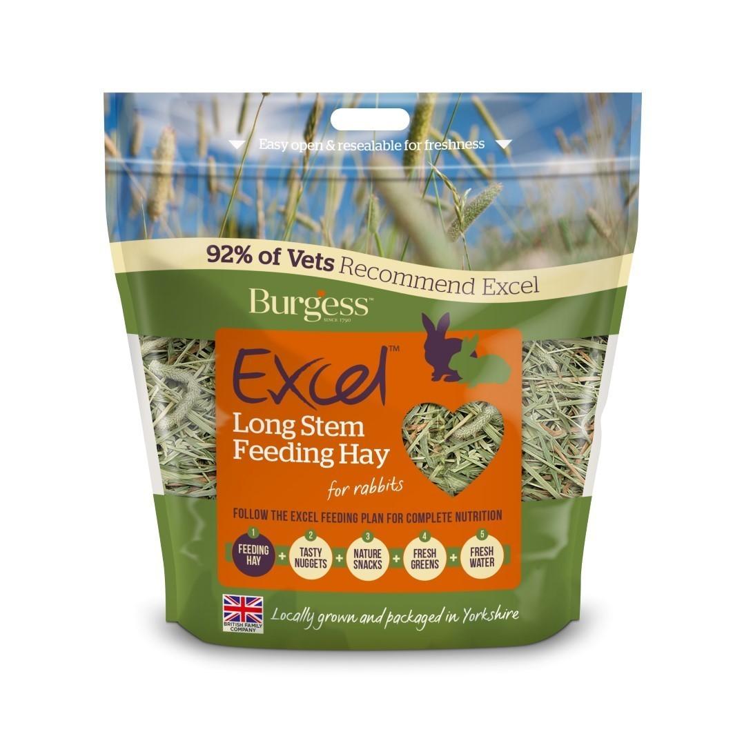 Burgess Timothy Long Stem Feeding Hay 1kg