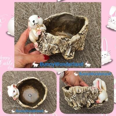 Bunny pattern pot  for Flower / Succulent