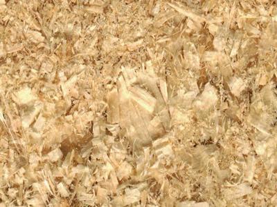 Organic Wood Shaving 2kg