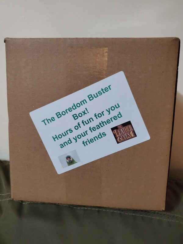 Medium Boredom Buster Box