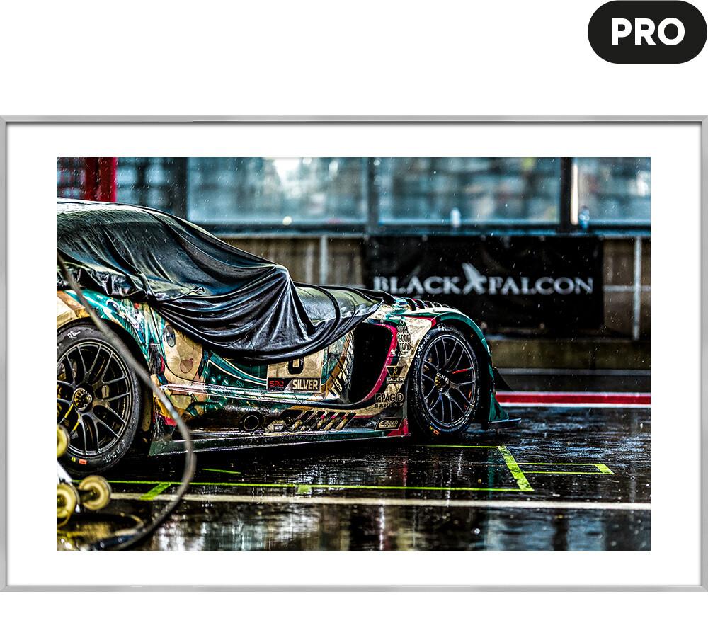 PRO - BLACK FALCON