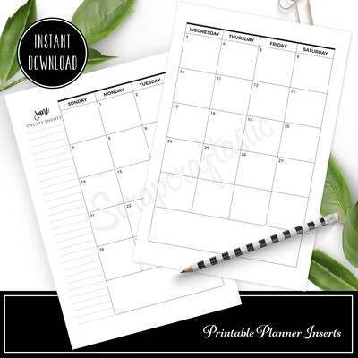 FULL PAGE LETTER SIZE - 2020 Dated Monthly Calendar with Notes Printable Planner Inserts