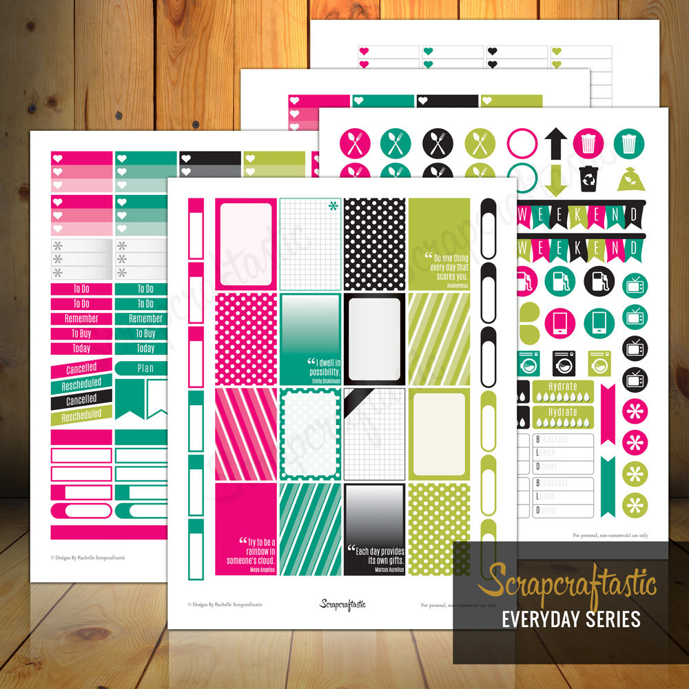 Planner Pro Everyday Series Printable Planner Stickers for the MAMBI Happy Planner