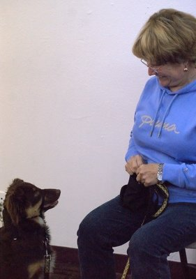 Well Trained  Puppies & Dogs, Level I: Sat, 08/15/20 @ 10:15 AM (Seminar &  3 1-Hr Classes), Joy-Instructor