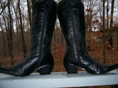 Sexy pair of fashion boots by Two Lips!