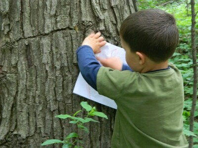 Eco-Explorers - Look, Sniff, Touch, & Listen - Ages 3-Entering K  (Aug 11-13)