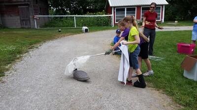 Eco-Explorers - Wildlife Rescue - 4th-6th grade (July 14-16)
