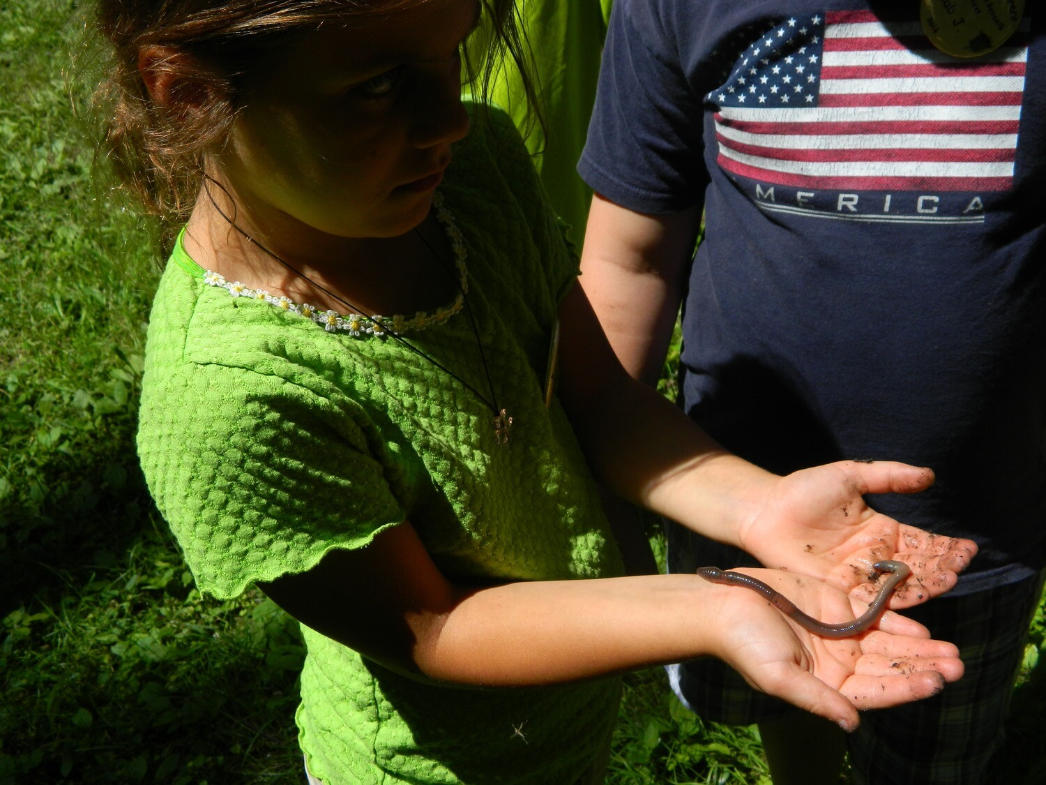 Eco-Explorers - The World Beneath Your Feet - 1st-3rd grade (August 11-14)