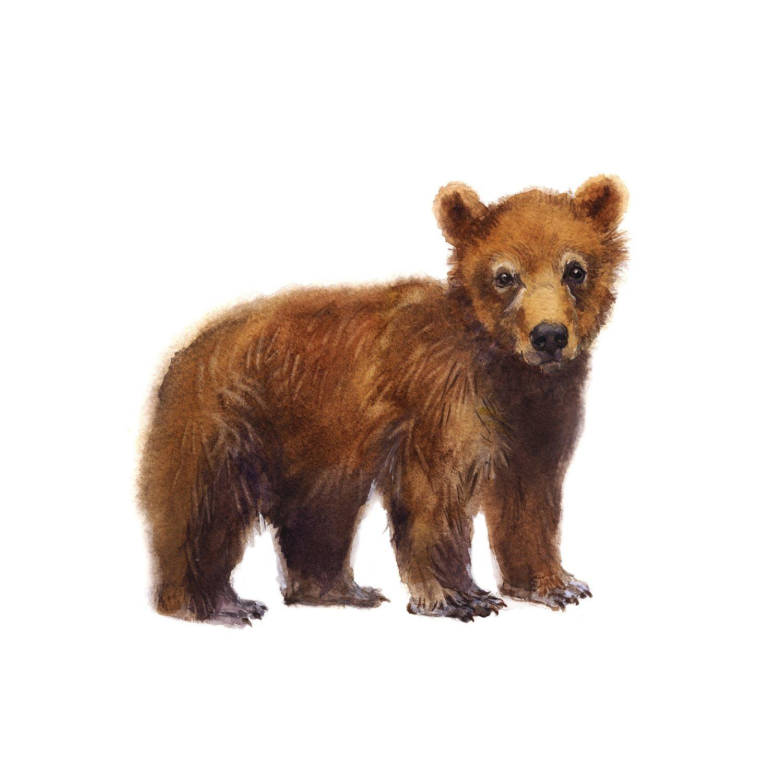 """Акварельная картина """"Медвежонок"""""""