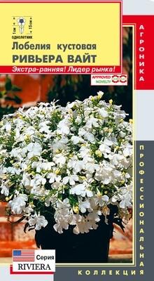 Лобелия кустовая Ривьера Вайт