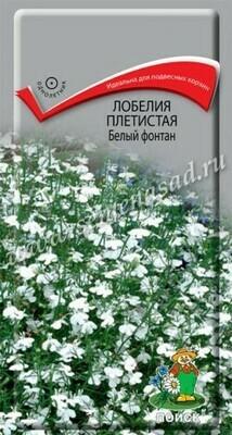 Лобелия плетистая Белый фонтан
