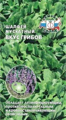 Шалфей мускатный Вкус грибов