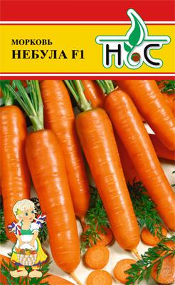 Морковь Небула F1