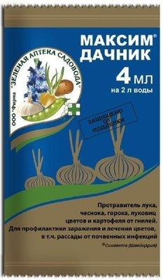 Максим Дачник (4мл)