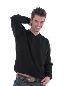 Embroidered Unisex V-Neck Sweatshirt