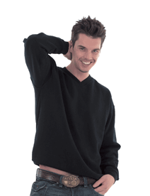 Embroidered Unisex V-Neck Sweatshirt