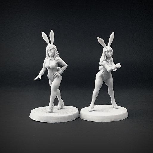 Bunnies 02