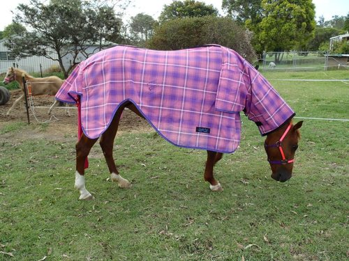 Broodmare Nursing Rug