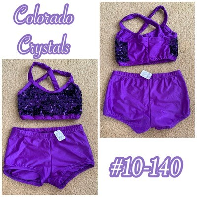 Audition gear Sequin outfit gently used in purple
