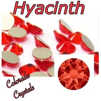 Hyacinth 34ss 2088