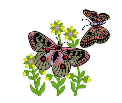 Дизайн машинной вышивки бесплатно Бабочки