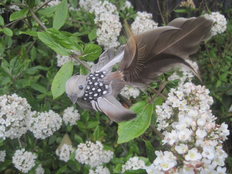 Dekorations fugl H13B3 cm